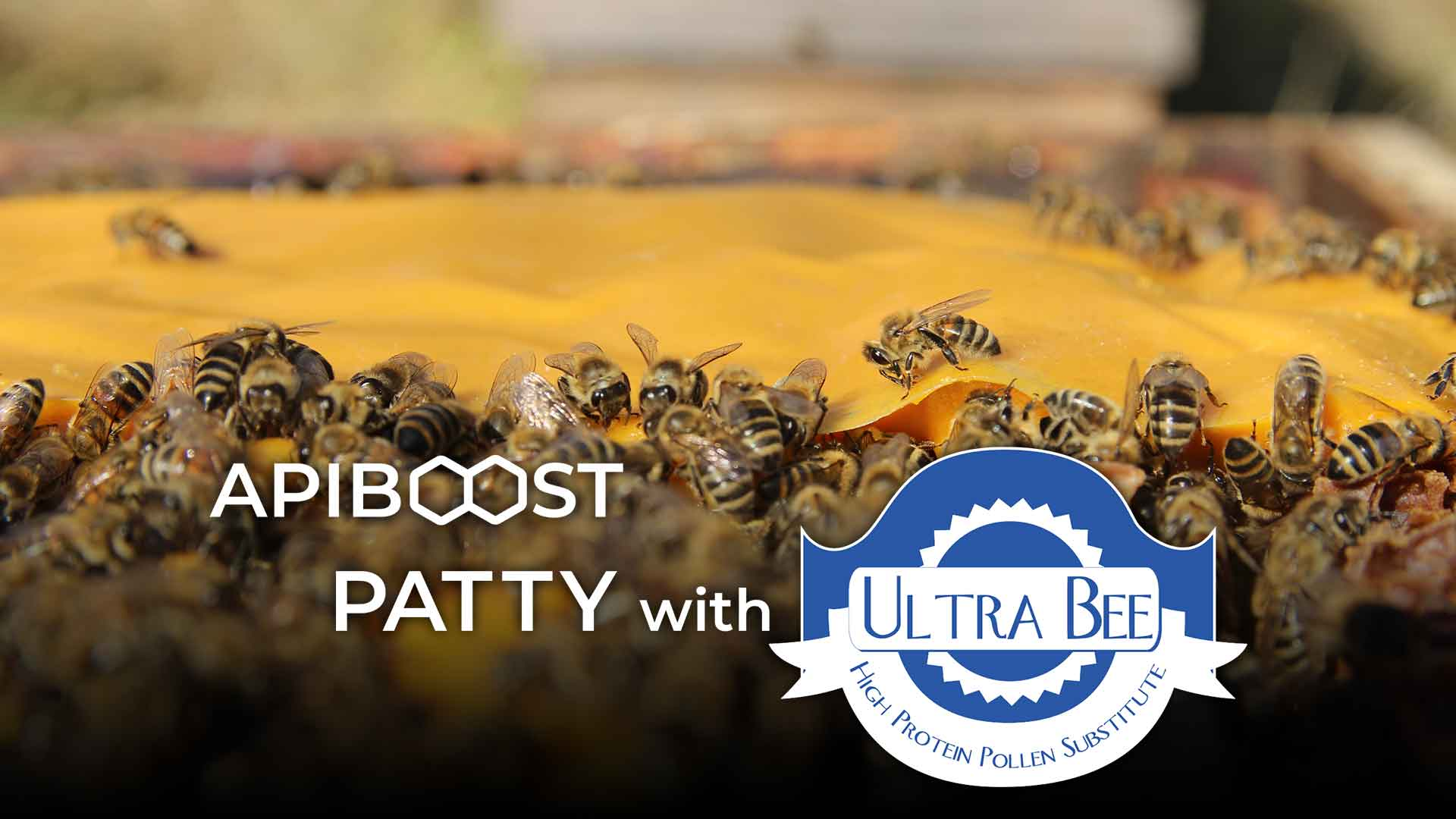 Patty with Ultra Bee - Apiboost